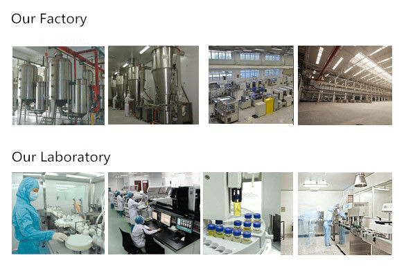 Hongxi International Pharmaceutical Co., Ltd.